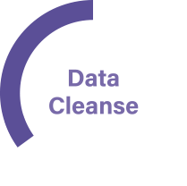 Data Cleanse - Indigo Swan