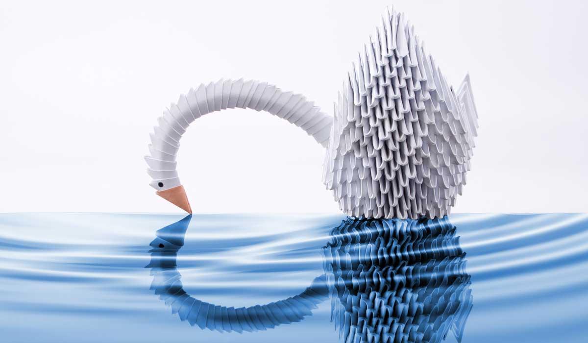 Paper swan on water